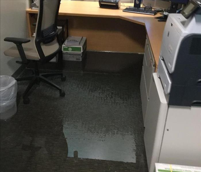 Commercial Water Damage from Burst Pipe