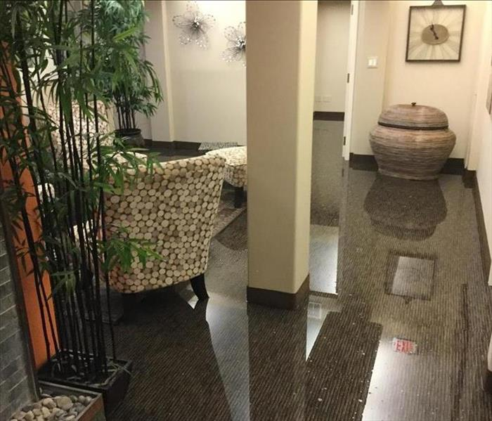 Commercial Commercial Water Damage in Springfield