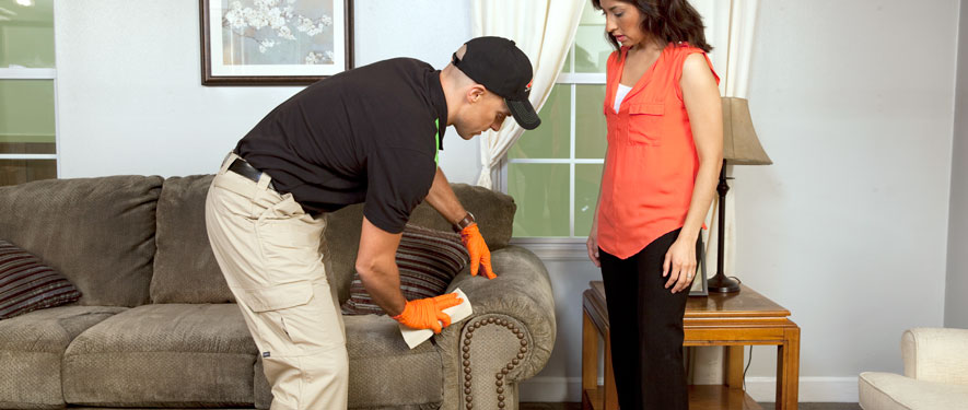 Springfield, MO carpet upholstery cleaning